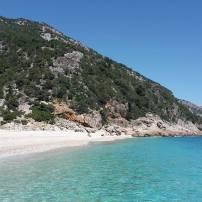 Sardegna - Dorgali (Nuoro) Male celeste