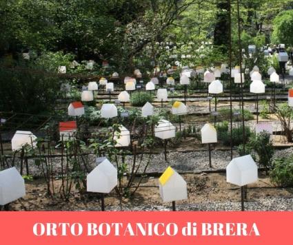 ORTO BOTANICO di BRERA.jpg